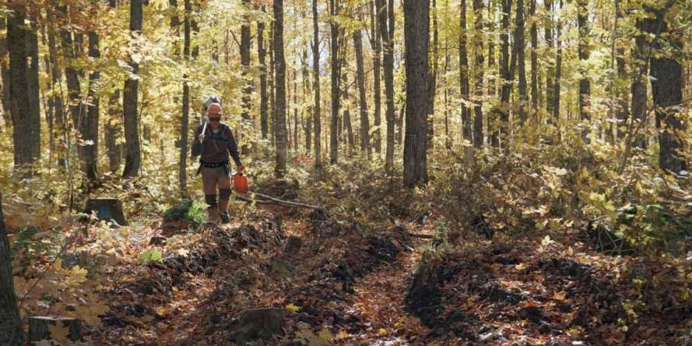 Métiers forestiers